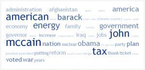 Words Gov. Palin used during the debate.